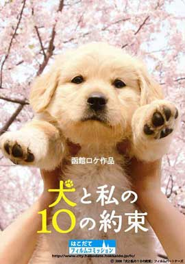 10 Promises to My Dog - 11 x 17 Movie Poster - Japanese Style D