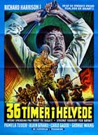 36 ore all'inferno - 11 x 17 Movie Poster - Danish Style A