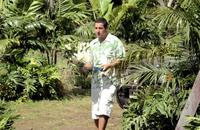 50 First Dates - 8 x 10 Color Photo #8