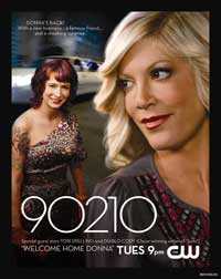 90210 (TV) - 11 x 17 TV Poster - Style J