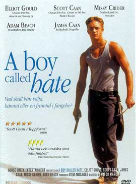 A Boy Called Hate - 11 x 17 Movie Poster - Style A