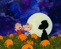 A Boy Named Charlie Brown - 8 x 10 Color Photo #1