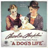 A Dog's Life - 30 x 30 Movie Poster - Style A