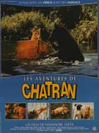 A Kitten's Story - 11 x 17 Movie Poster - French Style A