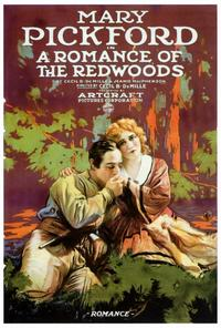 A Romance of the Redwoods - 27 x 40 Movie Poster - Style A
