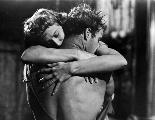 A Streetcar Named Desire - 8 x 10 B&W Photo #11