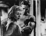 A Streetcar Named Desire - 8 x 10 B&W Photo #16