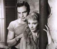 A Streetcar Named Desire - 8 x 10 B&W Photo #6