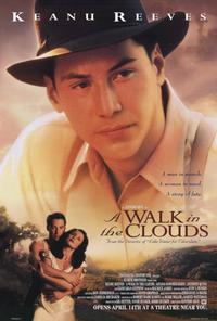 A Walk in the Clouds - 27 x 40 Movie Poster - Style A
