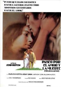 A Walk With Love and Death - 11 x 17 Movie Poster - Spanish Style A