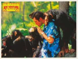 Ace Ventura: When Nature Calls - 11 x 14 Poster French Style L