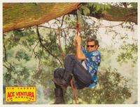 Ace Ventura: When Nature Calls - 8 x 10 Color Photo #8