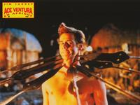 Ace Ventura: When Nature Calls - 8 x 10 Color Photo #10