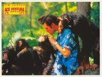 Ace Ventura: When Nature Calls - 8 x 10 Color Photo #12