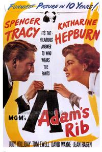 Adam's Rib - 43 x 62 Movie Poster - Bus Shelter Style A