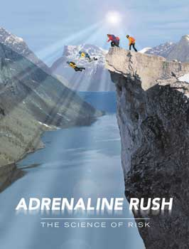 Adrenaline Rush: The Science of Risk - 43 x 62 Movie Poster - Bus Shelter Style A