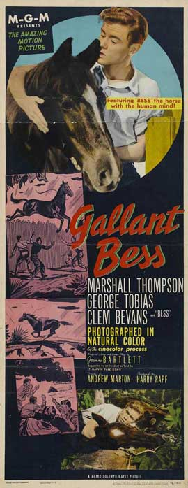 Adventures of Gallant Bess - 14 x 36 Movie Poster - Insert Style A