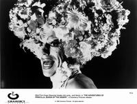 The Adventures of Priscilla, Queen of the Desert - 8 x 10 B&W Photo #1