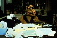 ALF - 8 x 10 Color Photo #5