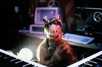 ALF - 8 x 10 Color Photo #10