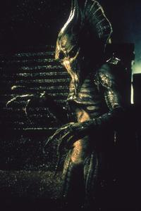 Alien Hunter - 8 x 10 Color Photo #6