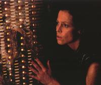Alien: Resurrection - 8 x 10 Color Photo #21
