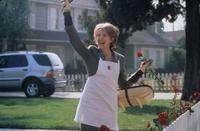 American Beauty - 8 x 10 Color Photo #1