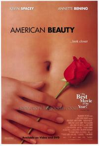 American Beauty - 43 x 62 Movie Poster - Bus Shelter Style A