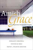 Amish Grace - 11 x 17 Movie Poster - Style A
