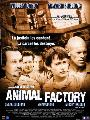 Animal Factory - 27 x 40 Movie Poster - Spanish Style A