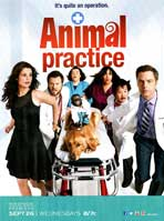 Animal Practice (TV) - 11 x 17 TV Poster - Style A