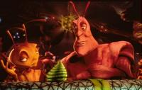 Antz - 8 x 10 Color Photo #12