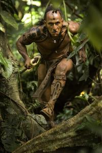 Apocalypto - 8 x 10 Color Photo #16