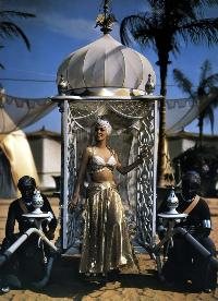 Arabian Nights - 8 x 10 Color Photo #1