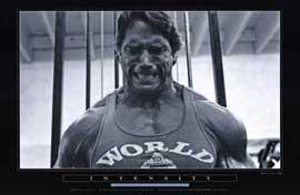 Arnold Schwarzenegger - 11 x 17 Movie Poster - Style C
