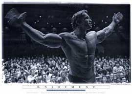 Arnold Schwarzenegger - 11 x 17 Movie Poster - Style E