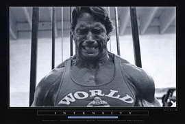 Arnold Schwarzenegger - 27 x 40 Movie Poster - Style C