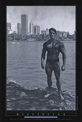 Arnold Schwarzenegger - 27 x 40 Movie Poster - Style D