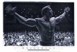 Arnold Schwarzenegger - 27 x 40 Movie Poster - Style E