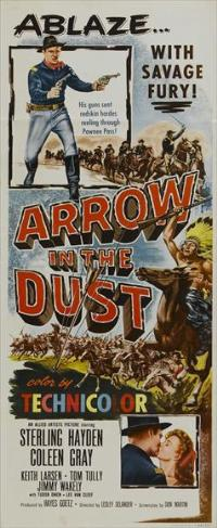 Arrow in the Dust - 14 x 36 Movie Poster - Insert Style A