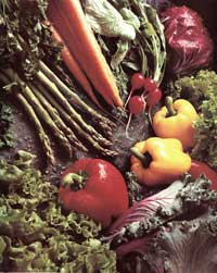 Assorted Peppers Vegtables - 11 x 17 Movie Poster - Style A