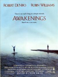 Awakenings - 43 x 62 Movie Poster - Bus Shelter Style A