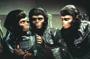 Back to the Planet of the Apes - 8 x 10 Color Photo #2
