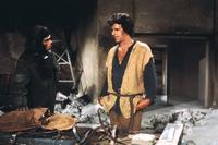 Back to the Planet of the Apes - 8 x 10 Color Photo #1