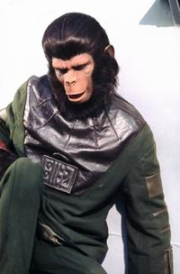 Back to the Planet of the Apes - 8 x 10 Color Photo #4