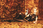 Barbarella - 8 x 10 Color Photo #1
