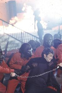 Battle for the Planet of the Apes - 8 x 10 Color Photo #5