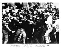 The Battle of Algiers - 8 x 10 B&W Photo #4
