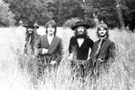Beatles - Beatles Group Picture on the Bushes in Black Suit and Black Brim Hat