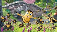 Bee Movie - 8 x 10 Color Photo #11